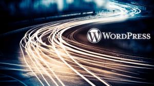 WordpressHostingSpeeds